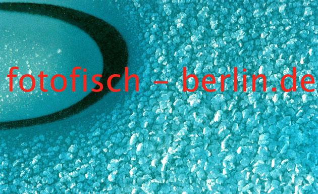 Gerhard F. Ludwig - http://www.fotofisch-berlin.de