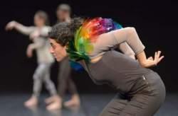 <http://www.fotofisch-berlin.de - Martin Nachbar _ANIMAL DANCES