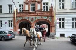 http://www.fotofisch-berlin.de - GAST.FREUNDSCHAFT_Wien-Berlin